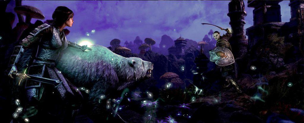 Morrowind - The Warden
