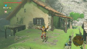 Breath of the Wild - Your House