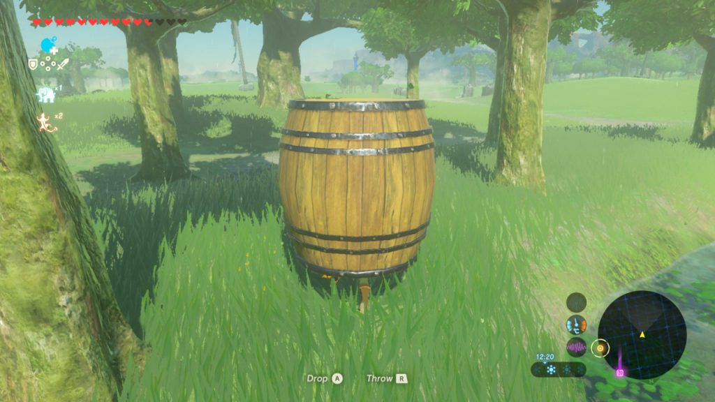 Breath of the Wild - Keg von Kakariko In The Forest