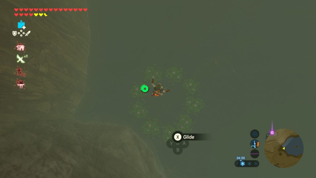 TLOZ - BotW Korok Guide - Flower Circle Water