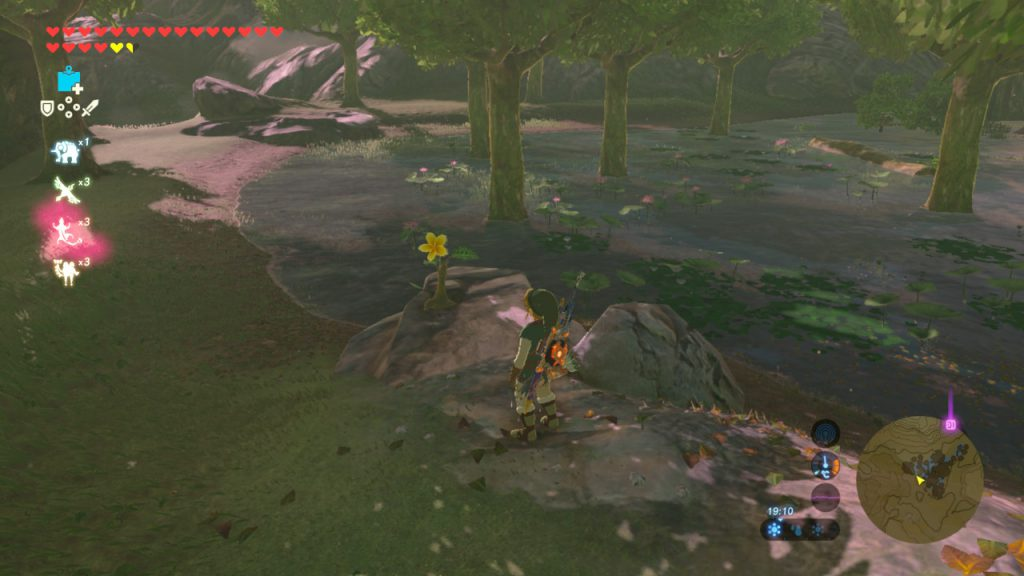 TLOZ - BotW Korok Guide - Follow Flower
